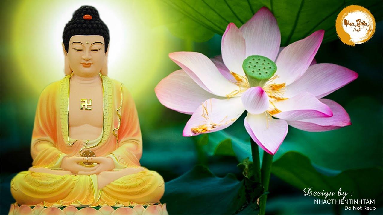 Tuyển Tập Nhạc Thiền Phật Giáo Hay NHất Mới Nhất 2020 – nhẹ nhàng thư giãn