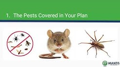 Cost of Pest Control | How to Evaluate a Quote from a Pest Control Company