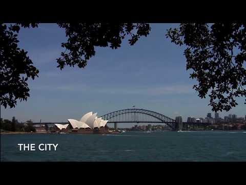 Plasticity Sydney 2017 - The Mashup