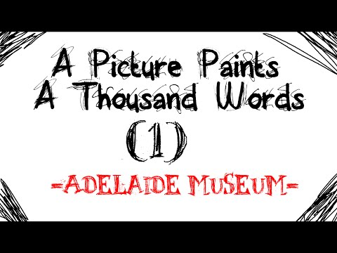 A Picture Paints A Thousand Words (1) Adelaide Museum
