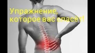 Одно Упражнение, которое наверняка избавит вас от Болей в Спине
