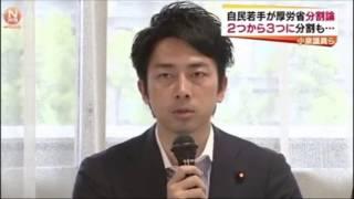 <自民党>小泉氏ら厚労省分割案 党内議論要請へ