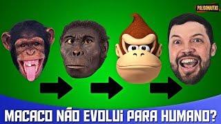 Humanos Evoluíram do Macaco? Por Que Macacos Não Evoluíram Para Humanos? | AstroPocket
