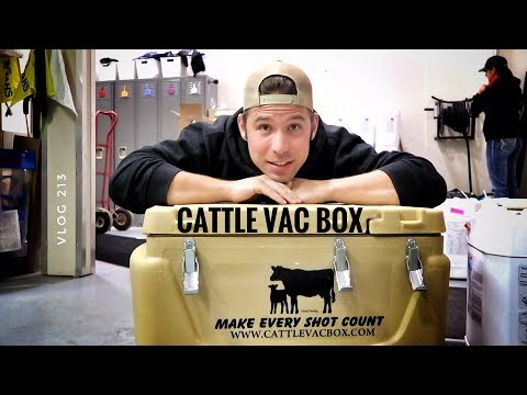 CATTLE VAC BOX vlog 213