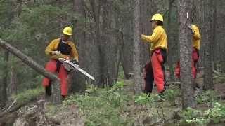 Wildland Fire Hand Crew July 2014 2 1