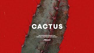 "[FREE] Rap/Hip Hop Instrumental ❌ Travis Scott Type Beat ""Cactus"" / Prod. Isa Torres ❌ Maldammba"