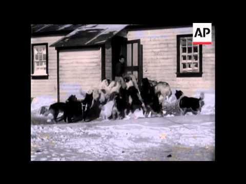 Arctic Adventure - Haig Thomas Arctic Expedition