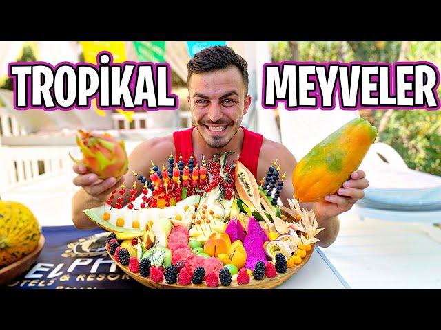 İLGİNÇ TROPİKAL MEYVELERİ DENEDİM!!