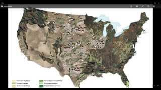 Военные Камуфляжи США - Введение