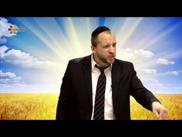 Why We Count the Omer - Rabbi Gavriel Friedman