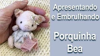 Apresentando e Embrulhando uma Mini Porquinha Teddy