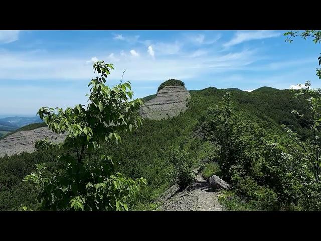 Giorgio Genovese – Guida di Mountain Bike vi porta sul Monte Barigazzo (Parma)