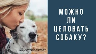 Можно ли целовать собаку?