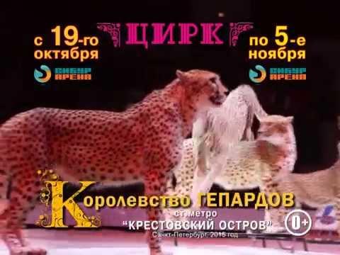 - ЛУЧШИЕ билеты в цирк на Вернадского. Купить