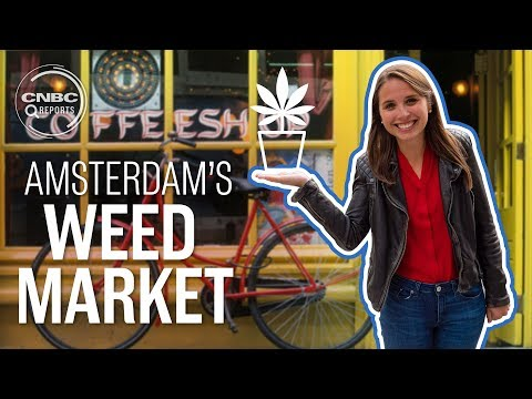 Amsterdam's jealous of America's weed industry | CNBC Report