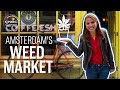Amsterdam's jealous of America's weed industry | CNBC Reports