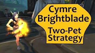 Cymre Brightblade 2 Pet Guide for An Awfully Big Adventure