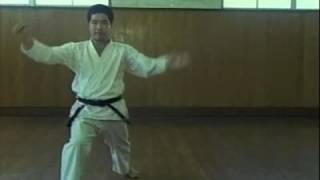 Saifa - Kaishugata