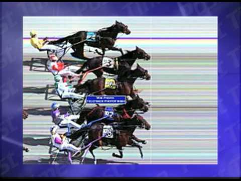 Fastest Triple Dead Heat In Harness Racing History