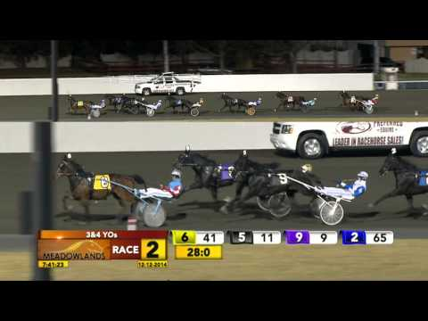 Meadowlands December 12, 2014 - Race 2 - Mister Anson