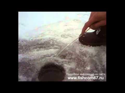 что такое медуза рыболовная снасть