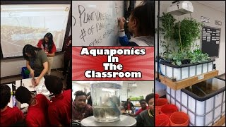 Aquaponics: History, Importance, And Classroom Implementation