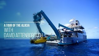 A Tour of the Alucia with David Attenborough - attenboroughsreef.com