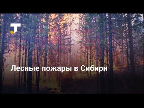 Лесные пожары в Сибири на видео из соцсетей