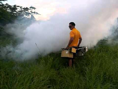 Primito Pest Control, Aruba, Exterminators, Mosquito Thermal Superhawk  Fogger Fogging