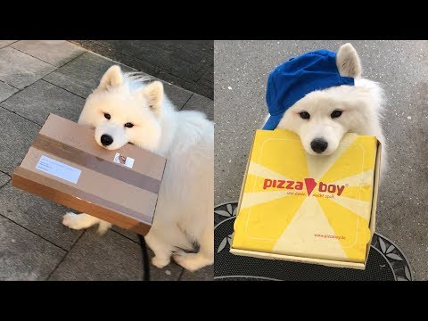 Send Your Cutest Delivery Girl
