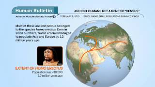 Science Bulletins: Ancient Humans Get a Genetic