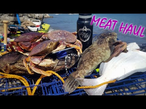 Huge CABEZON, Surprise HALIBUT!!! Big Crabs, Lingcod And A Mystery MONSTER