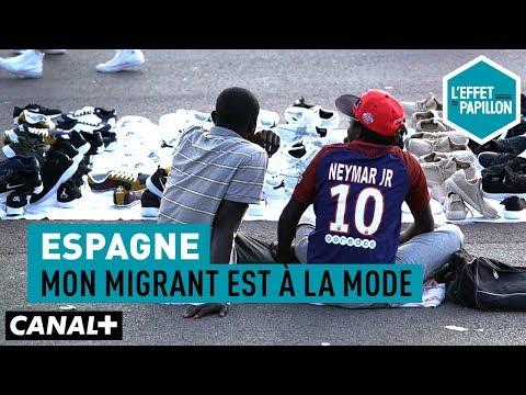 Espagne : Mon Migrant Est à La Mode - L'Effet Papillon – CANAL+