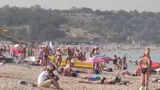 экстренный выпуск  пляж Любимовка. Только факты.(Понедельник. Все отсыпаются после вчерашнего праздника и ночного салюта. Только местные жители в 8 утра..., 2016-08-01T07:37:30.000Z)