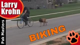 Dog Training And Biking / Nashville Dog Training