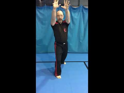 Knee strike set from Te-Ashi-Do Martial Arts