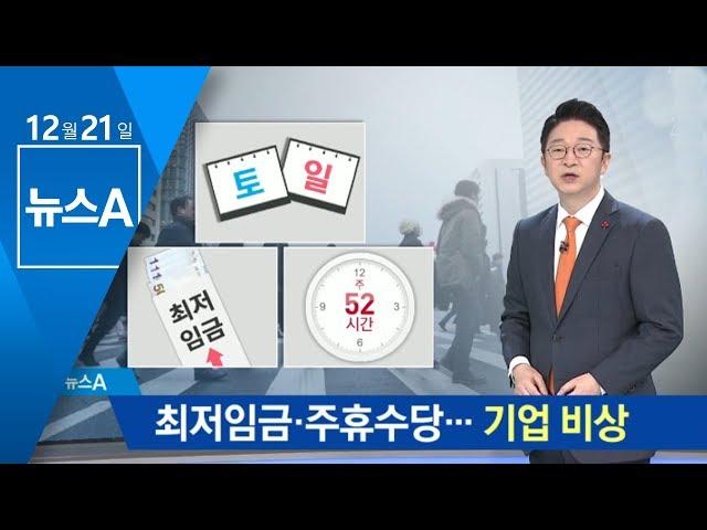 내년 최저임금+주휴수당→시급 1만 �…기업 비�   뉴스A