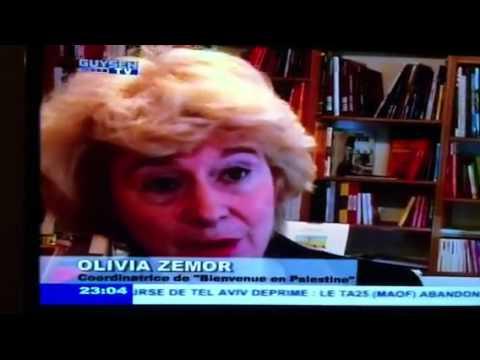 Journal Tv mission Palestine