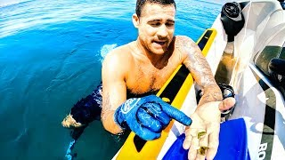 FOUND A RARE SHARK TOOTH While Diving On A Dead Whale From Shark Attack  - Ep 154
