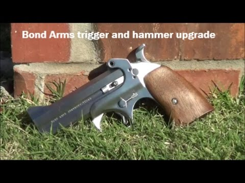 Bond Arms trigger & hammer upgrade