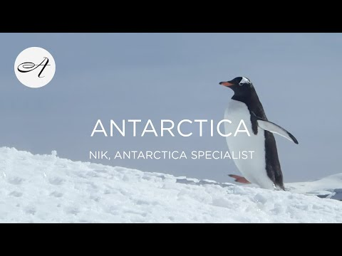My travels in Antarctica with Audley Travel