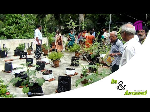 In & Around 1 | Terrace Farming In Kerala | Urban Farming