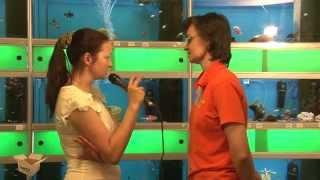 TEST.TV: Выбираем аквариумных рыбок: петушки, гуппи, пираньи?(, 2014-05-27T15:51:11.000Z)