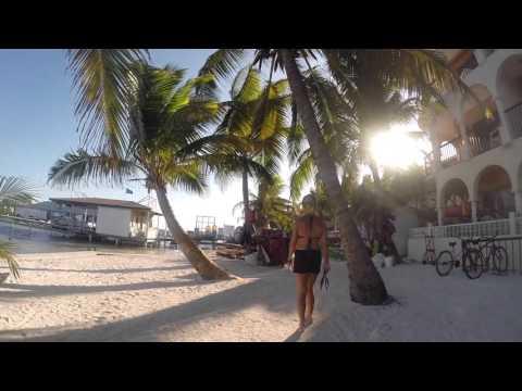 Diving Belize/ San pedro /Douglas dahlin