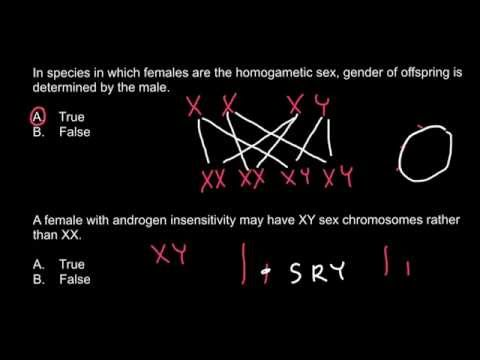 Is it possible for a female to be  XY genotype or not?