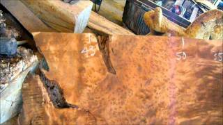 Redwood Burl Slabs - California Fruitwoods 9/6/2011