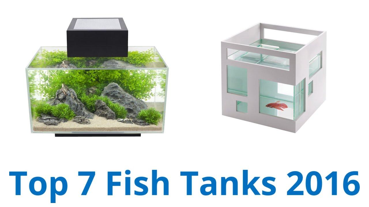 Best Fish Tanks 2016 - YouTube
