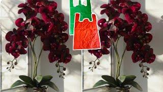 Como Fazer Flores De Orquídea A Partir De Um Saco Plástico