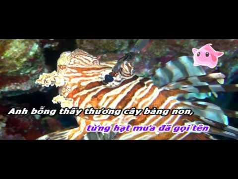 Vô cùng - Minh Uyên karaoke [4-5-2016]