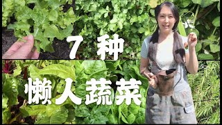 【菜园子10】7種懶人蔬菜種菜必备的几种菜 | 7 easy grown vegetables | 逛菜园